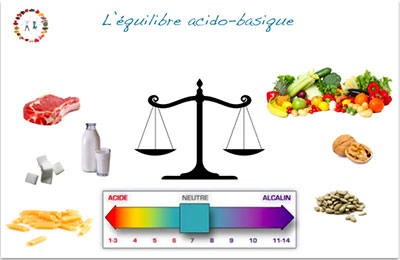 Équilibre acido-basique - Synergie alimentaire