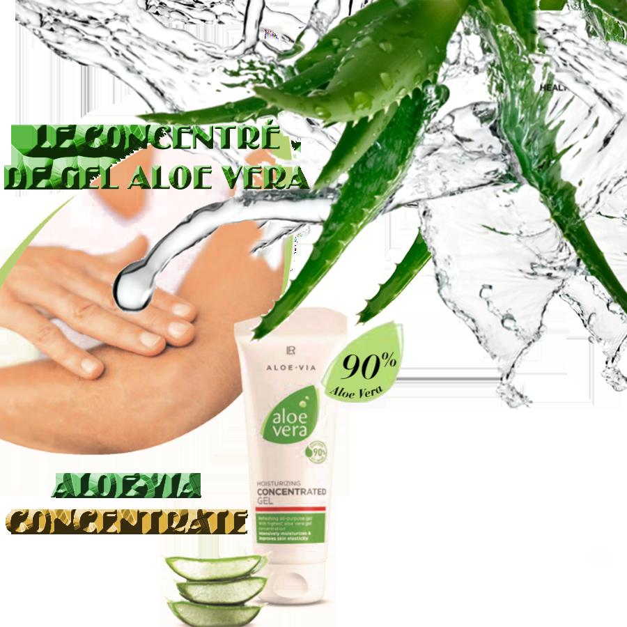 Aloe-Via Concentrate - Le soin en tube de concentré en gel Aloe Vera pur et naturel