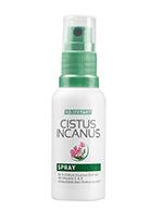 Cistus-incanus-spray