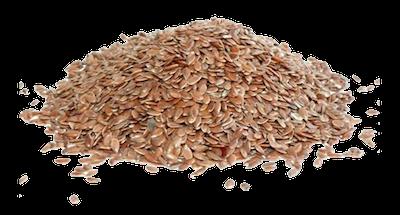 graines de lin