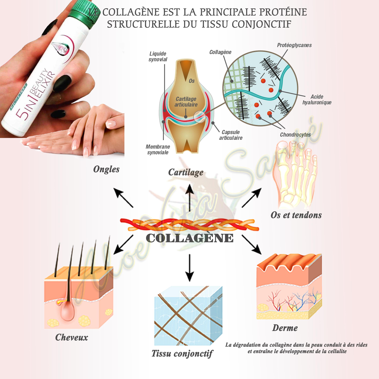 L'elixir de beauté 5en1 apporte un supplément de collagène qui joue un rôle important dans notre organisme (peau, muscles et articulations)