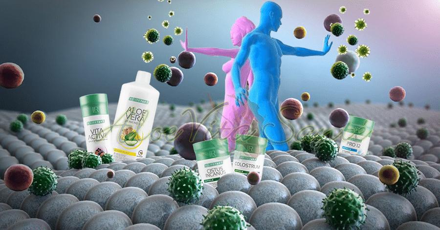 Solutions naturelles pour protéger son système immunitaire