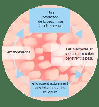 Déséquilibre au niveau du microbiome (Protection antibactérienne de la peau)